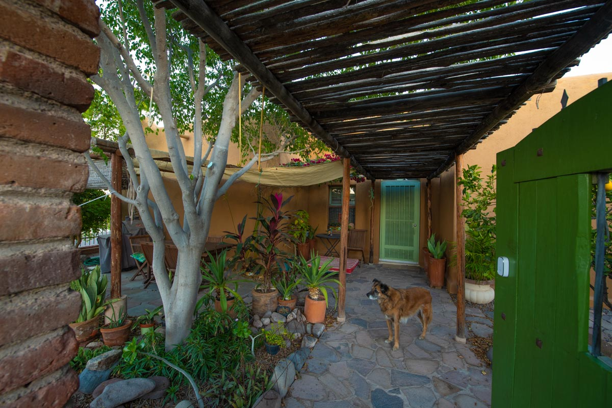 One level 2 bed/1.5 bath home: private garden